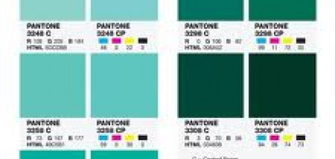 Pantone Color Bridge Coated / Uncoated interior