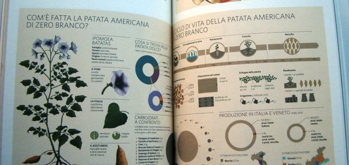 Infographic Design in Media interior 3